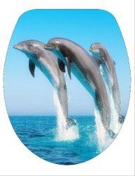 DUROPLAST 172 DELFIN antibakteriális WC ülőke, delfines (színes, mintás, képes, fényképes) rozsdamentes zsanérral, 3 oldalon nyomtatott (tetőkülső+tetőbelső+ülőrész)