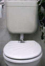 TOILETTE NETT bidé / bidével kombinált WC-ülőke, poliészter-műgyanta kivitel, kagylómintás tetővel, fehér színű, 120K típus