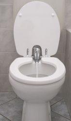 TOILETTE NETT bidé / bidével kombinált WC-ülőke, poliészter-műgyanta kivitel, fehér színű, 420L típus, elsősorban monoblokkos wc csészékhez