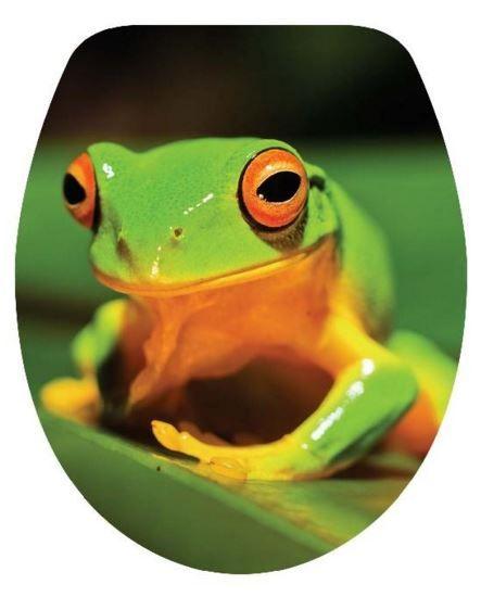 DUROPLAST BÉKA / FROG antibakteriális WC ülőke, (színes, mintás, képes, fényképes) rozsdamentes zsanérral, 3 oldalon nyomtatott (tetőkülső+tetőbelső+ülőrész)