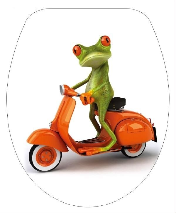 DUROPLAST MOTOROS BÉKA / FROG IN MOTOR antibakteriális WC ülőke, (színes, mintás, képes, fényképes) rozsdamentes zsanérral, 1 oldalon nyomtatott (tetőkülső)